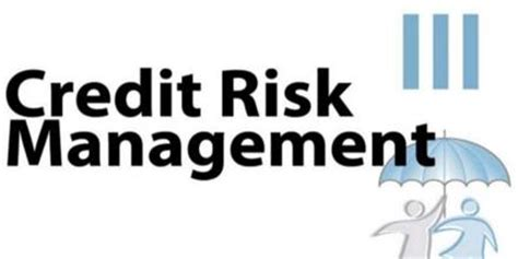 Historical Development of Risk Management - 1354 Words