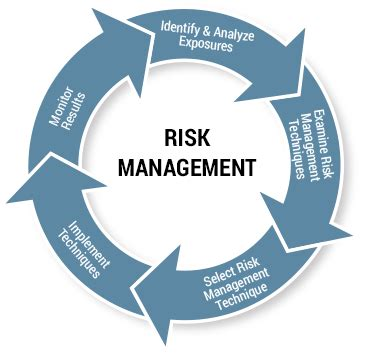 Importance of Risk Management Free Essays - PhDessaycom